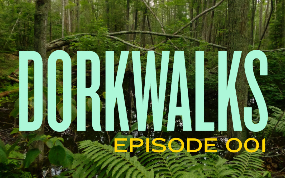 Introducing DORKWALKS